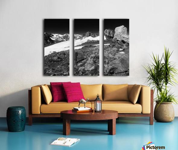 The Tundra Split Canvas print