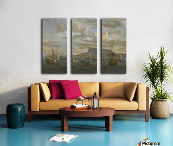 A view of Nafp Split Canvas print