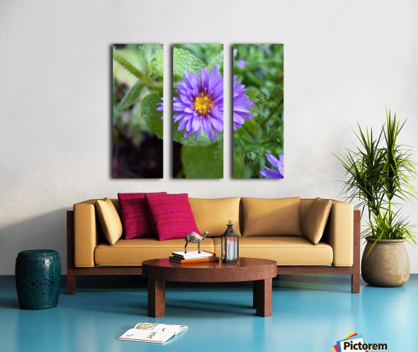 SAM_0414 (2) Split Canvas print