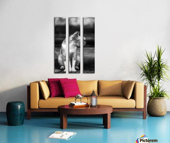 IMG_1324 Split Canvas print