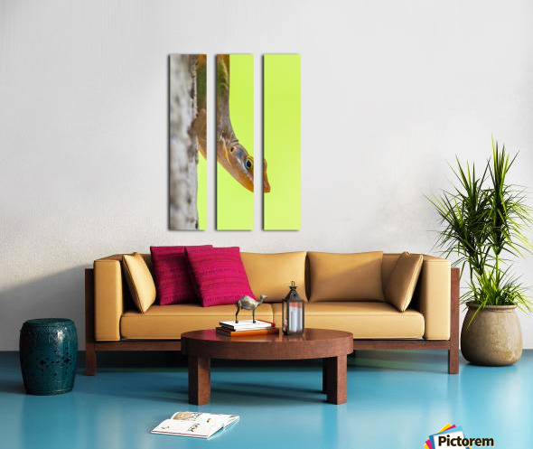 IMG_1264 Split Canvas print