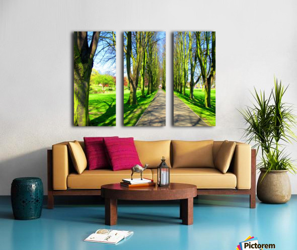 Summer Avenue Split Canvas print