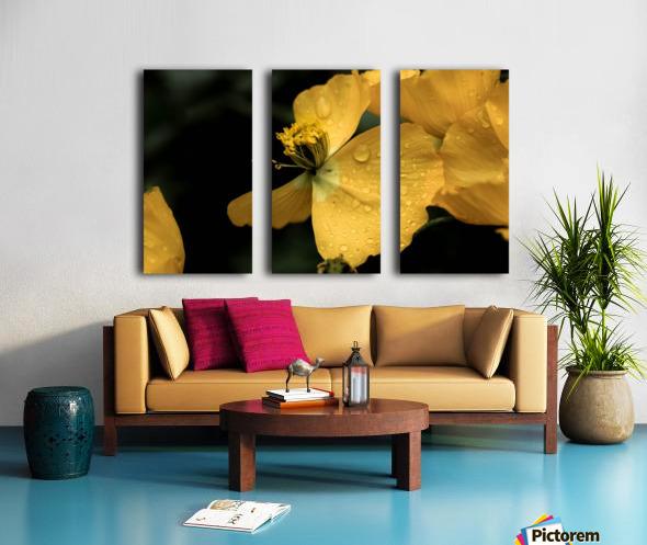 Butterfly Flower Split Canvas print