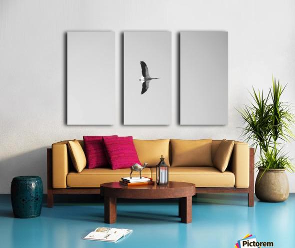 Accolade Split Canvas print