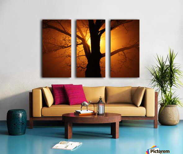abstract sun tree Split Canvas print