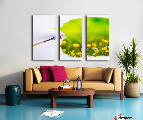 Paintbrush Outdoor Flower Flowers Sunlight Split Canvas print