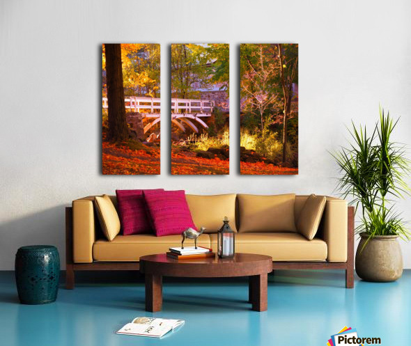 Autumn Colors II Split Canvas print