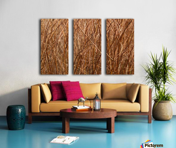 Abstract Background Branch Brown Color Flora Split Canvas print