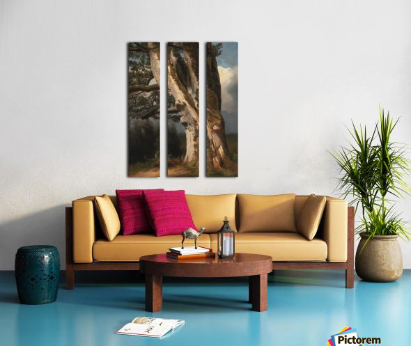 An oaktree trunk Split Canvas print