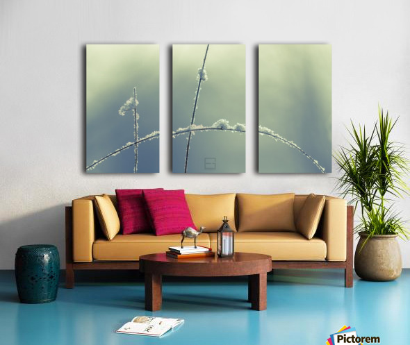 _ Split Canvas print