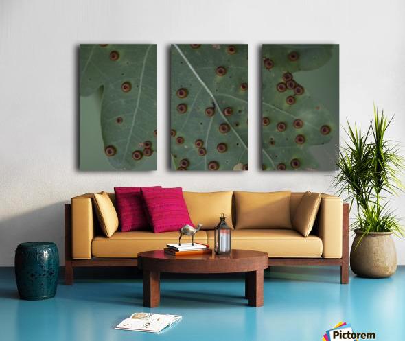 - Split Canvas print