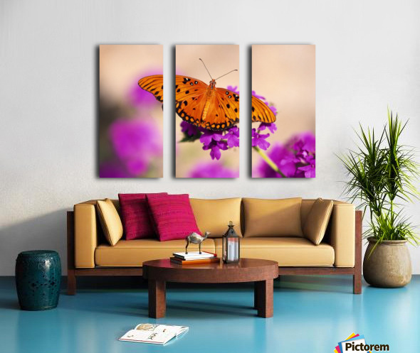 Orange Butterfly Split Canvas print