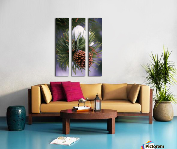Early Snow On Pine Tree Branch With Pinecone Split Canvas print