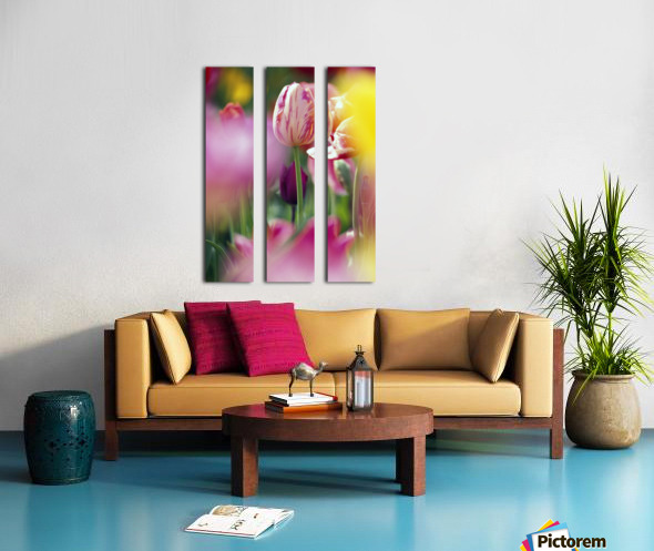 Tulip Flower Split Canvas print