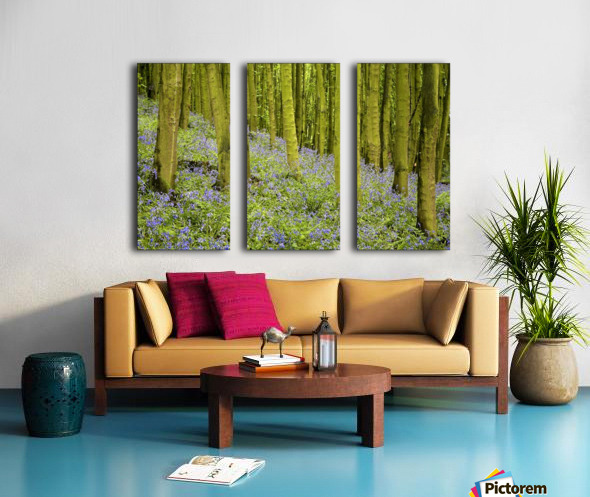 Bluebell Wood Impression Split Canvas print