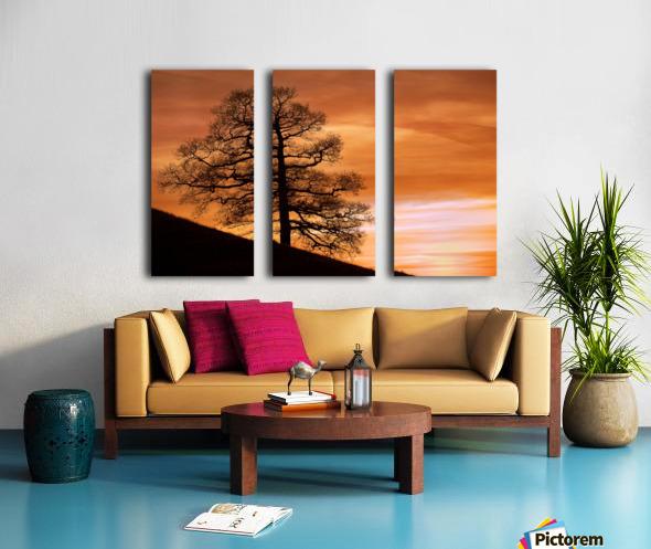 Tree Against A Sunset Sky, Nottinghamshire, England Split Canvas print