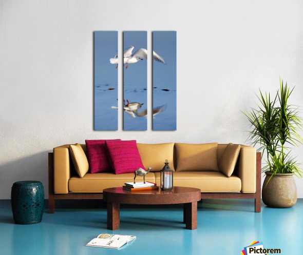 Bird Landing Split Canvas print
