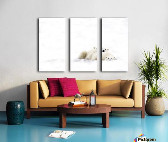 Two Polar Bears Snuggling Split Canvas print