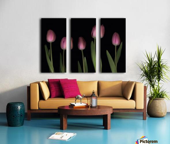 Pink Tulips Split Canvas print