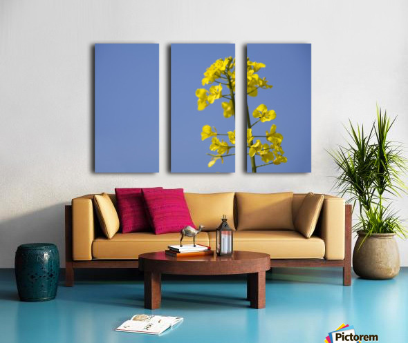 Yellow Flowers Split Canvas print