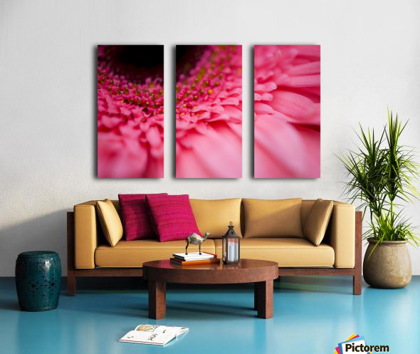 Close Up Of A Pink Flower Split Canvas print