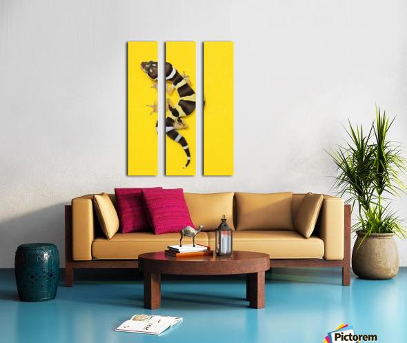 Baby Leopard Gecko On Yellow Split Canvas print