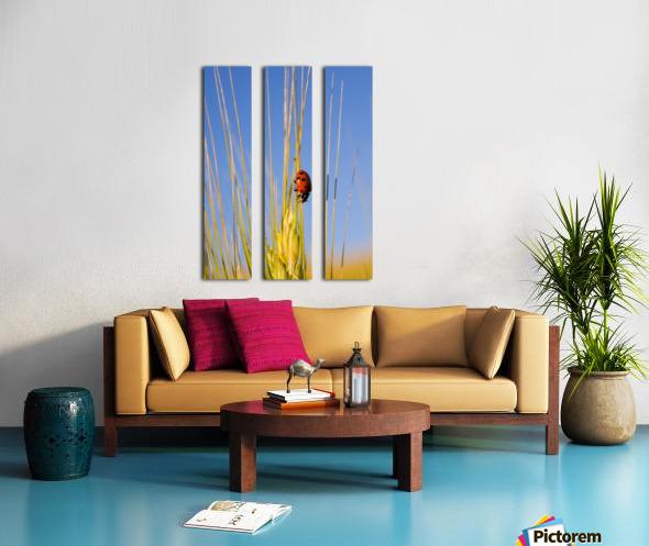 Lady Bug On A Plant Split Canvas print