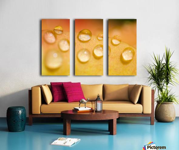 Water Droplets Split Canvas print