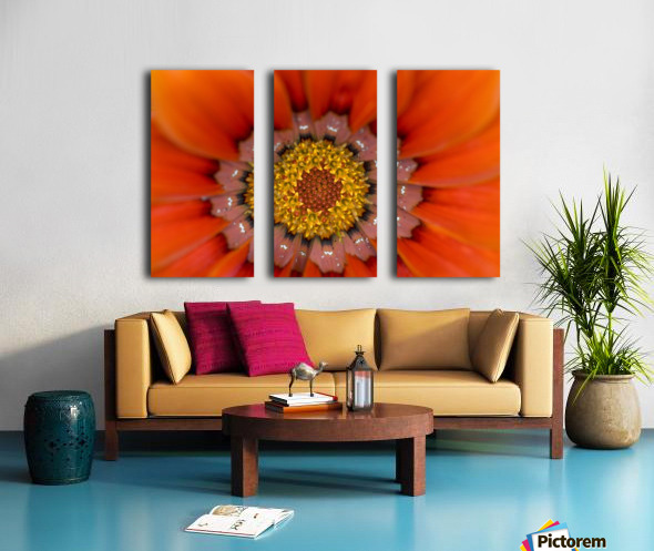 Lake Of The Woods, Ontario, Canada; Colourful Flowers In Bloom Split Canvas print