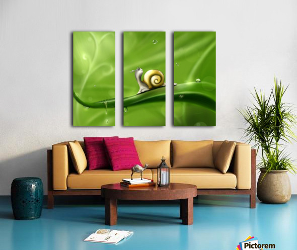 Snail Split Canvas print