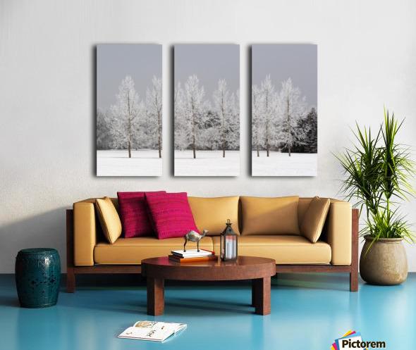 Winter, Calgary, Alberta, Canada Split Canvas print
