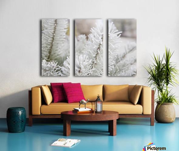Frost On Pine Tree Split Canvas print