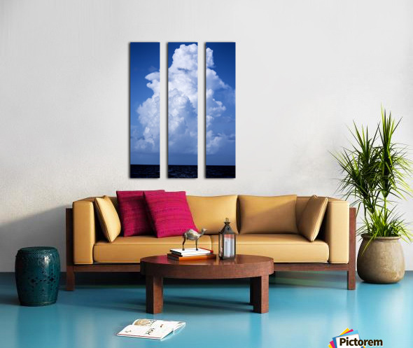 Billowing Split Canvas print