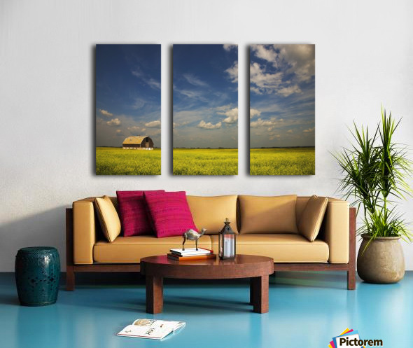 Alberta, Canada; An Old Barn In A Field Split Canvas print