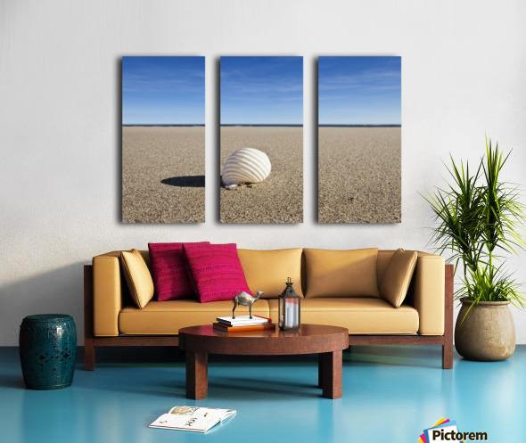 Northumberland, England; A Seashell On The Sand On Low Newton Beach Split Canvas print