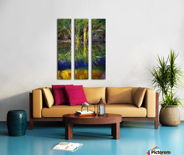 Reeds Reflecting On The Water; St. Albert, Alberta, Canada Split Canvas print