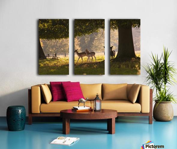 Deer Standing Under A Tree; North Yorkshire, England Split Canvas print