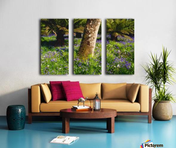 Mount Congreve Gardens; County Waterford, Ireland Split Canvas print