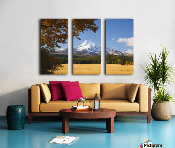 Mount Hood And Autumn Colours In Hood River Valley; Oregon, United States of America Split Canvas print