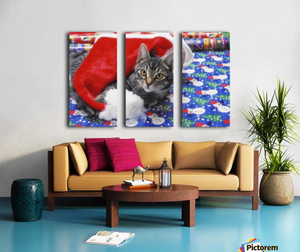 Grey tabby cat with santa claus hat lying on christmas gift wrap;Vancouver british columbia canada Split Canvas print