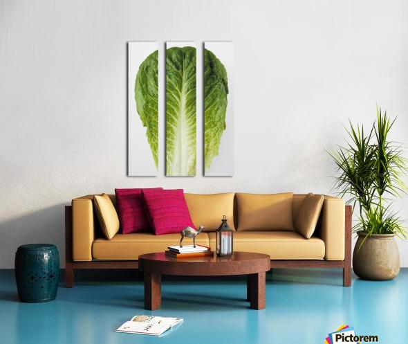 Agriculture - Closeup of a Romaine lettuce leaf on a white surface, studio. Split Canvas print