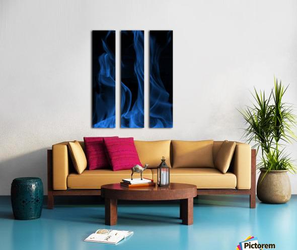 Embraced Split Canvas print