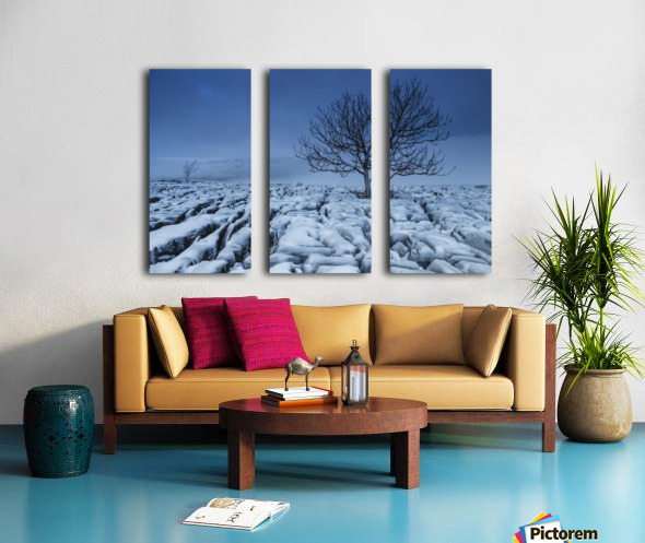Cold Blue Trees, Yorkshire Dales, UK Split Canvas print