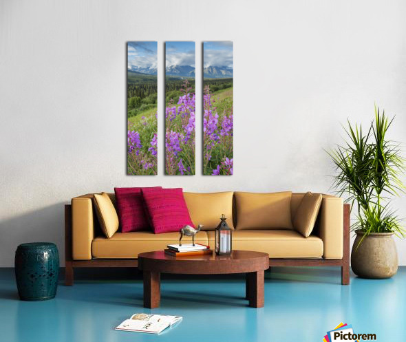 Scenic view of landscape near Palmer, Alaska, with Fireweed (Epilobium angustifolium) in the foreground, Southcentral Alaska, summer Split Canvas print