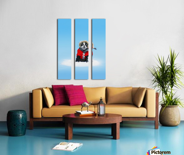 French bull terrier wearing jacket on blue background; Toronto, Ontario, Canada Split Canvas print
