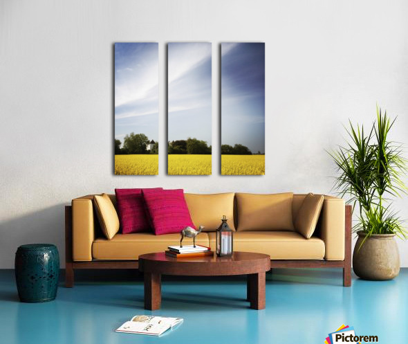 Scania sky Split Canvas print