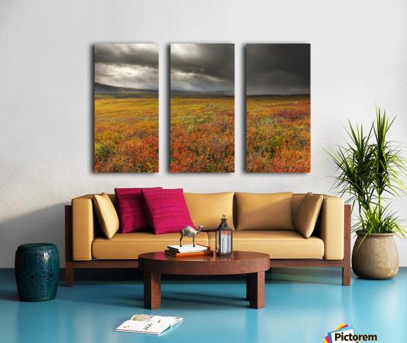 A storm passes over the bright colors of autumn in Denali National Park & Preserve, Alaska. Split Canvas print