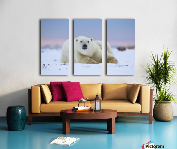 Polar bear (ursus maritimus) along the Hudson Bay coastline waiting for the bay to freeze over; Churchill, Manitoba, Canada Split Canvas print