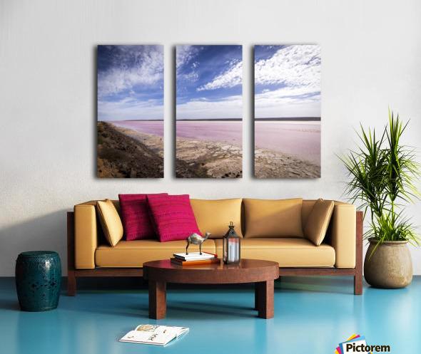 Pink Lake Split Canvas print