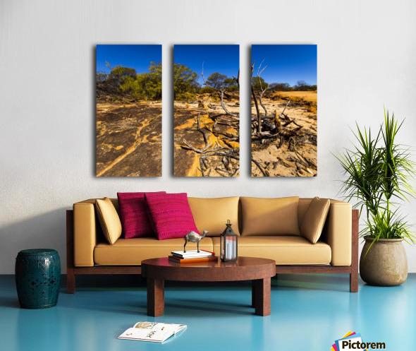 Kalbarri Canyon Split Canvas print
